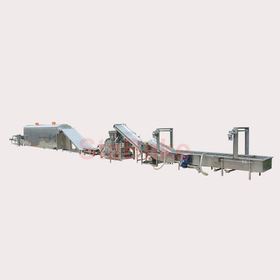 Raisin Washing and drying grading processing line