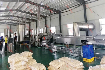Banana chips production line in Columbia